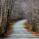 Montgomery Mountain Road by Deborah  Benoit