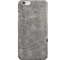 The Emotional Wall iPhone Case/Skin