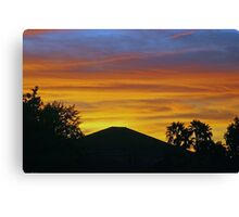Arizona paintbrush 2 Canvas Print