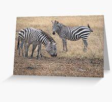 Zebras in Masai Mara Greeting Card