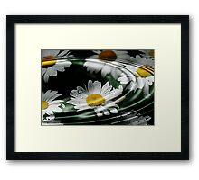 Daisy Ripples Framed Print