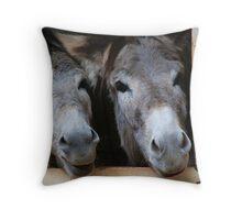 Bob and Bob Throw Pillow
