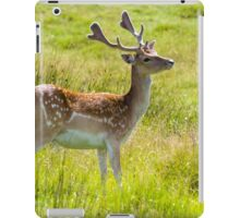Alert Deer iPad Case/Skin