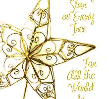 A Shining Star On Every Tree... by Rosemary Scott