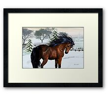 Winters Day .. a stallion in the snow Framed Print