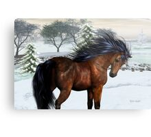 Winters Day .. a stallion in the snow Metal Print