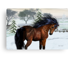 Winters Day .. a stallion in the snow Canvas Print