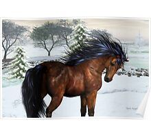 Winters Day .. a stallion in the snow Poster