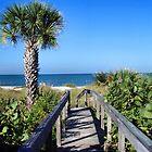 boardwalk by stelfox1