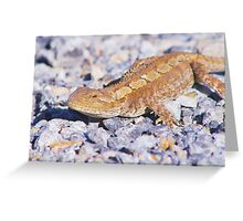 Dragon in the sun Greeting Card