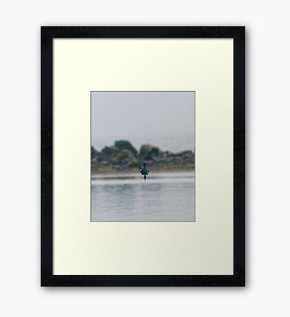 Dive Master Framed Print