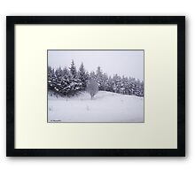 Winter Scene Framed Print