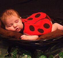 Sleepy Baby Bug by palmerley