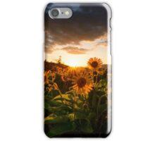 Rowena Crest Sunset iPhone Case/Skin