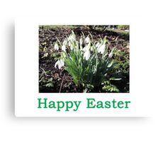 SnowDrops (Easter) Canvas Print