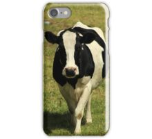 Holstein Cow Walking iPhone Case/Skin