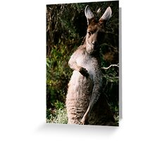 Thats the spot Greeting Card