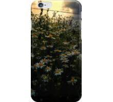 The Early Glow iPhone Case/Skin