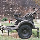 German Field Gun by Edward Denyer
