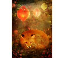 Fox Dreams Photographic Print