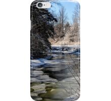 Shades of Winter iPhone Case/Skin