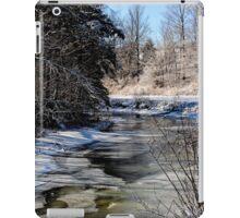 Shades of Winter iPad Case/Skin