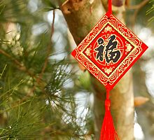 Gong Xi Fa Cai - Happy New Year - 1 ©  by © Hany G. Jadaa © Prince John Photography