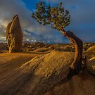 Joshua Tree Sunrise Jumbo Rocks by photosbyflood