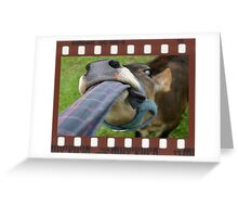 Framed Cow 101 Greeting Card