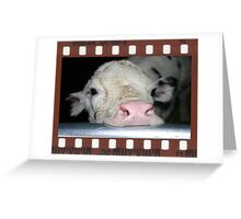 Framed Cow 102 Greeting Card
