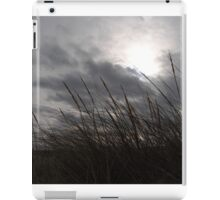 Tall Grass And The Blues iPad Case/Skin