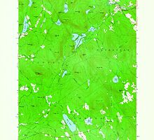 Maine USGS Historical Map North Waterford 806985 1963 24000 by wetdryvac