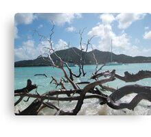 Caribbean island Metal Print