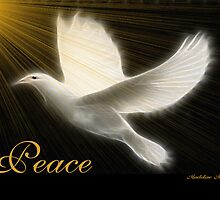 ~ PEACE ~ by Madeline M  Allen