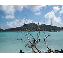 Caribbean Island sailing Photographic Print