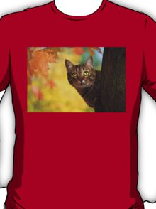 Fall Cat T-Shirt