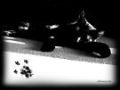 My Beautiful Cat Shadow - RIP by dimarie