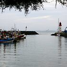Harbour Gates -  Port of La Cotinière by Pamela Jayne Smith