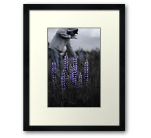 Stopping Framed Print