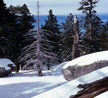 Mt. Jacinto III by Dennis Begnoche Jr.