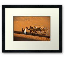 4 Camels Framed Print