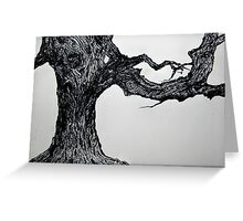 BEECH TREE - ETCHING   Greeting Card