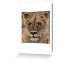 THE LIONESS Greeting Card