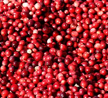 Cranberries by Dave Law