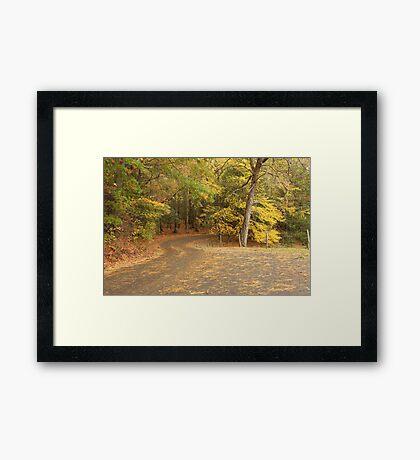 Cades Cove Loop Framed Print