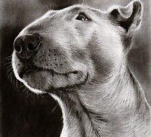 Bull Terrier Bully Dog by art-of-dreams