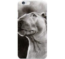 Bull Terrier Bully Dog iPhone Case/Skin