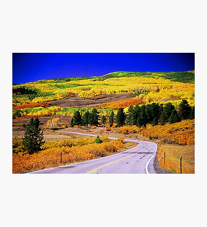 Fall Over 12 Photographic Print