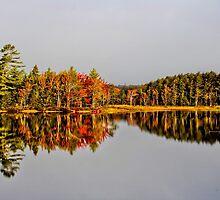 Mirror of Beauty by Kathleen   Sartoris