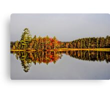Mirror of Beauty Canvas Print